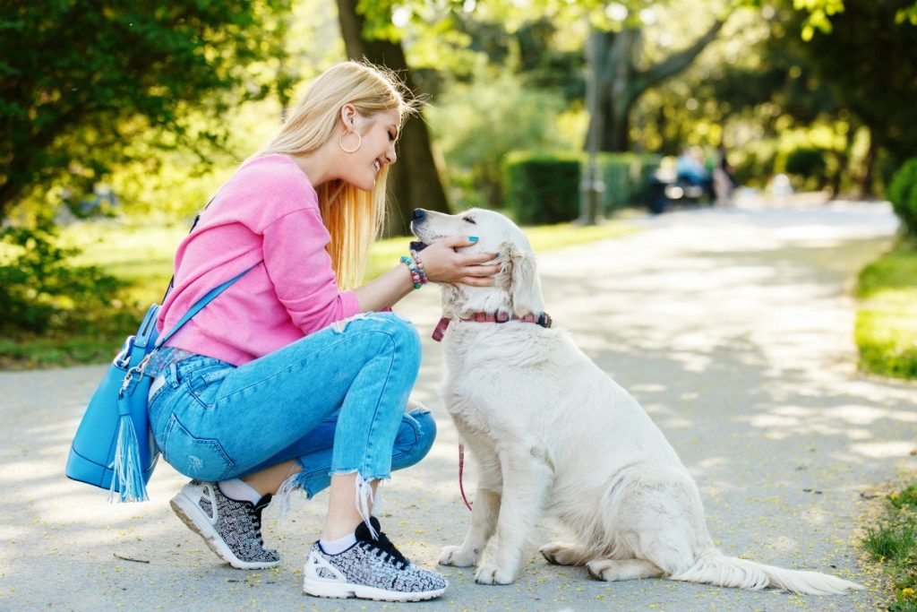 Doggy Training - Ways To Stop Your Pooch From Biting You